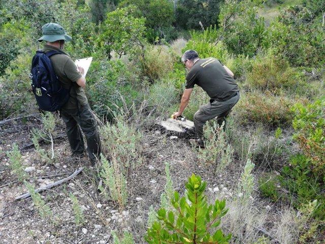 Agentes de Medio Ambiente inspeccionando la finca de la Serra.