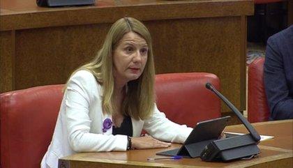 El PSOE exige una mejora de la prevención y atención a menores en caso de violencia durante confinamientos