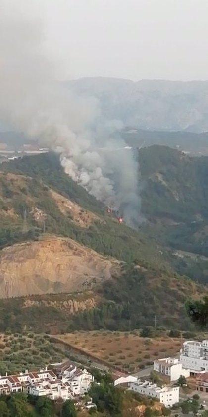 Declarado un incendio forestal en Archidona (Málaga)