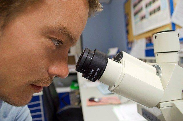 Investigan una proteína poderosa implicada en el desarrollo de anticuerpos