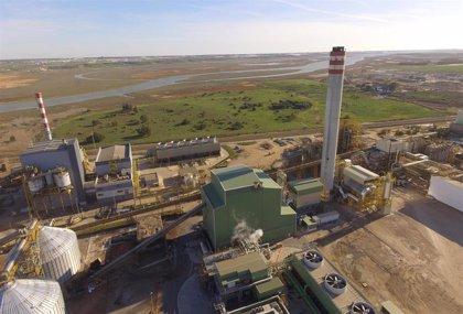 Ence proyecta en Andalucía seis plantas de generación de energía eléctrica a partir de fuentes renovables