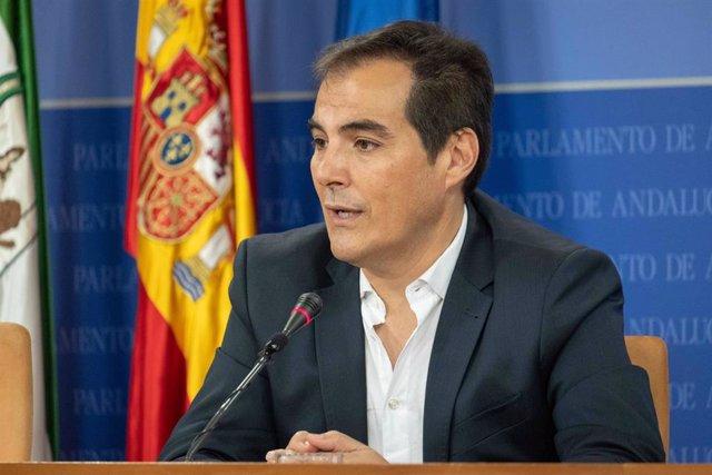 El portavoz parlamentario del PP-A, José Antonio Nieto, en rueda de prensa.