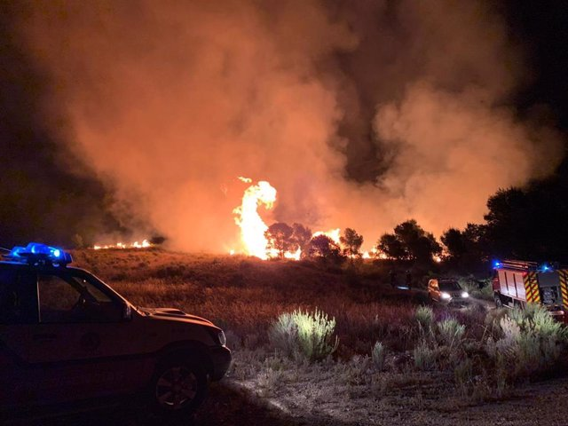 Imagen del incendio en Balonga (Abanilla), facilitada por Protección Civil Abanilla.