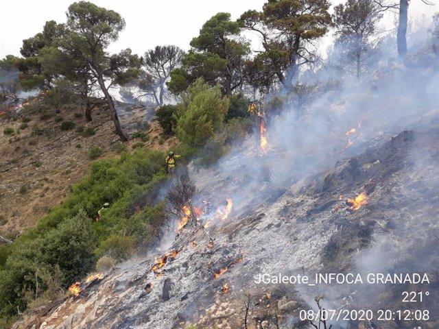 Bomberos gorestales trabajando en la extinción del incendio de Quesada