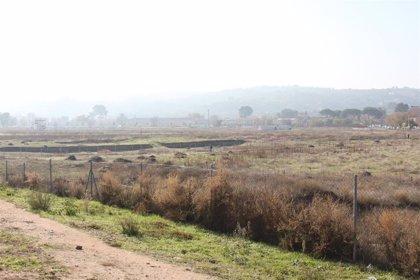 Tolón cree que Junta podía haber hecho antes perimetrar Vega Baja con georadar