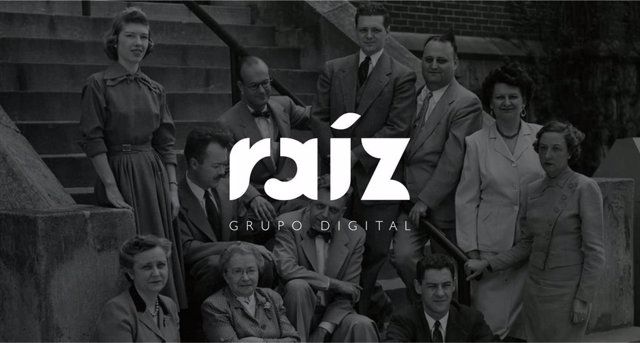 Grupo Raíz Digital