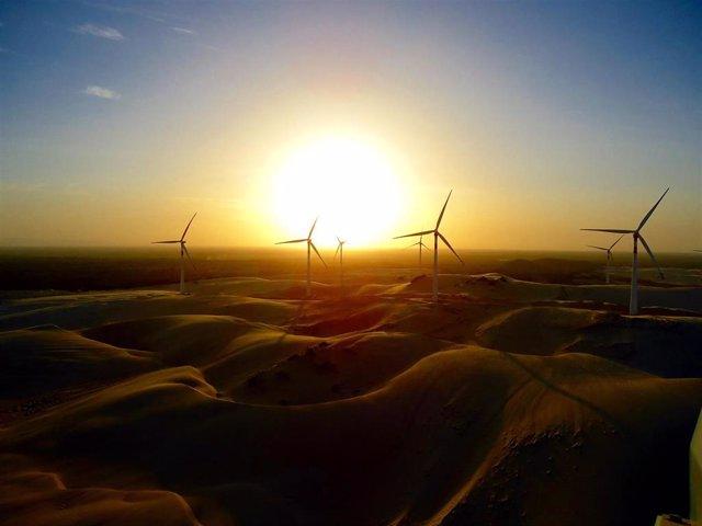 Parque eólico de Siemens Gamesa en Brasil