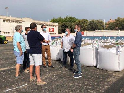 El IME cambia el césped de los campos de fútbol de Coll d'en Rabassa, Son Roca, el Secar de la Real y la Victòria