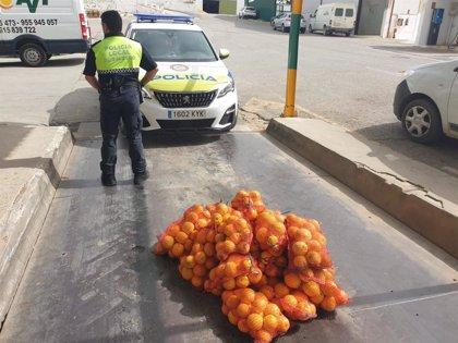 """Intervenidos en El Saucejo (Sevilla) más de 100 kilos de naranjas """"con riesgo para el consumo"""""""