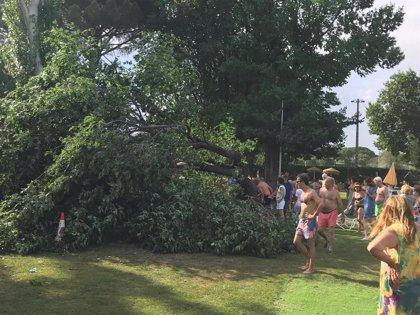 Herida leve una joven de 16 años al caer un árbol en una zona de piscina del Club de Campo Villa de Madrid