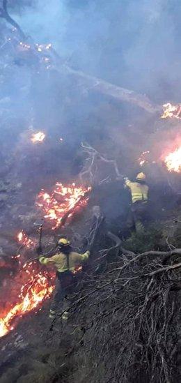 Efectivos del Infoca trabajando en la extinción del incendio de Quesada