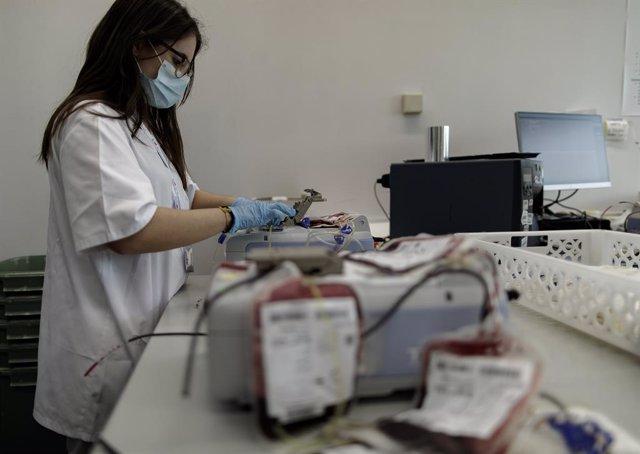 El plasma sanguíneo transmite los efectos restauradores del ejercicio al cerebro