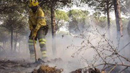 Controlado un incendio en el paraje Asperillas de Cantillana (Sevilla)