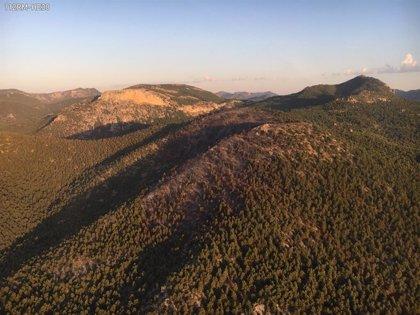 Emergencias da por controlado el incendio forestal del Cerro Gordo de Caravaca de la Cruz (Murcia)