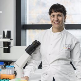 Doctora Astero Klampatsa de The Institute of Cancer Research en Londres,
