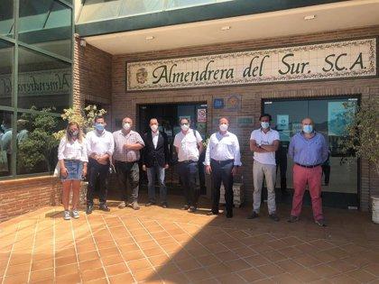 La estimación de campaña de almendra en Andalucía se sitúa en 29.300 toneladas, con Granada como principal productora