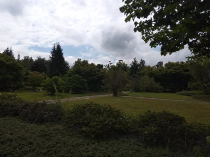 Nubes, alguna llovizna y temperaturas máximas de 24 grados este sábado en Euskadi