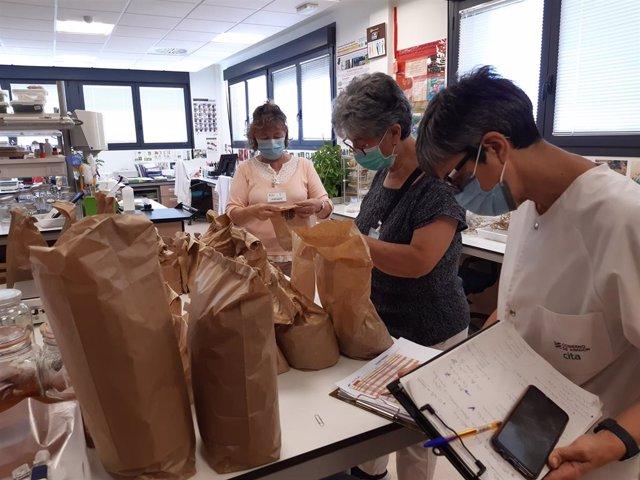 La colección del Banco de Germoplasma Hortícola del CITA se amplía con semillas