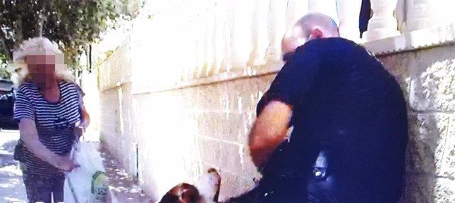 La Policía Local Detiene A Un Hombre Por Un Presunto Delito De Exhibicionismo Delante De Cuatro Menores Y Atentado Contra La Autoridad En La Playa De San Juan En Alicante