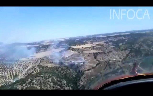 Incendio forestal en Coripe