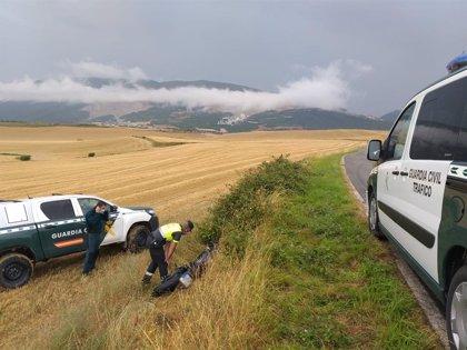 Dos heridos leves en una salida de vía de una motocicleta en Biurrun