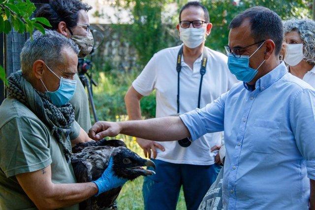 Ángel Sánchez, director general de Medio Natural, Biodiversidad y Espacios Protegidos, visita el centro del quebrantahueso