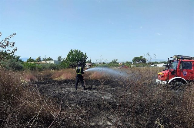 Sucesos.- Bomberos del CEIS apagan un incendio de bancales y cultivos abandonado