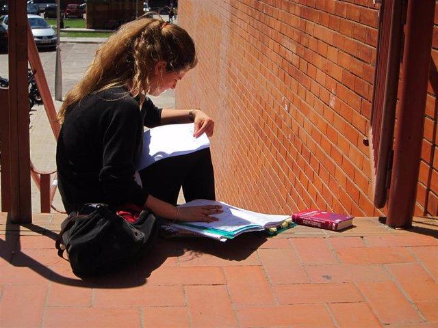 Una estudiante repasando sus apuntes