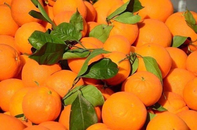 Naranjas, precios, IPC