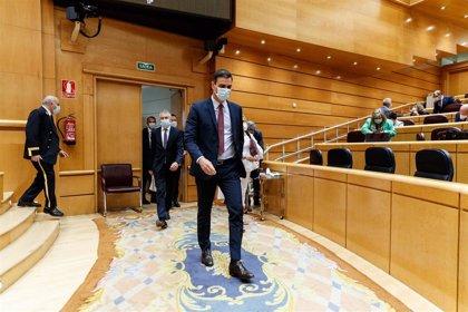"""PP denuncia que Sánchez """"no tenga previsto"""" comparecer en el inicio de sesiones del Senado: No respeta la Cámara"""