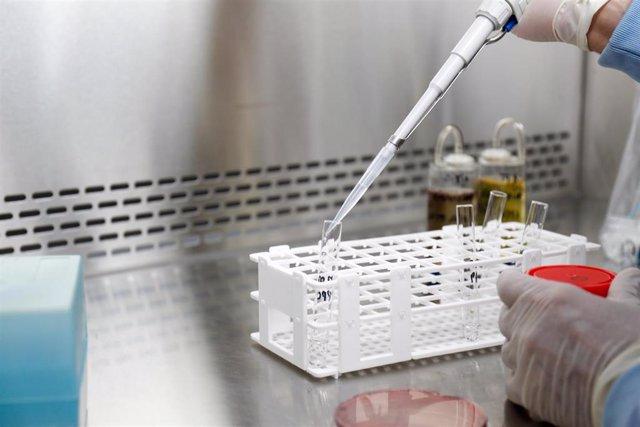 Imagen de archivo de un laboratorio donde se tratan muestras de coronavirus.