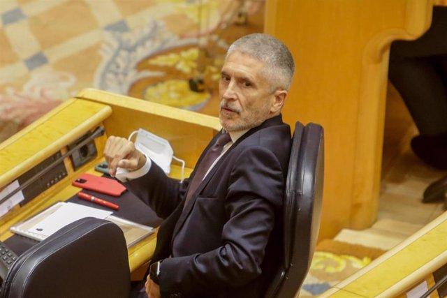 El ministro del Interior, Fernando Grande-Marlaska, durante la sesión de control al Gobierno en el Senado