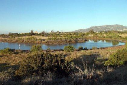 El Gobierno asegura que la principal causa de la presencia de nitratos en acuíferos es la actividad agrícola y ganadera