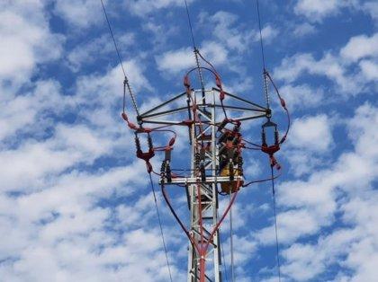 Endesa adapta 15 soportes para proteger a aves en líneas eléctricas de Barcelona
