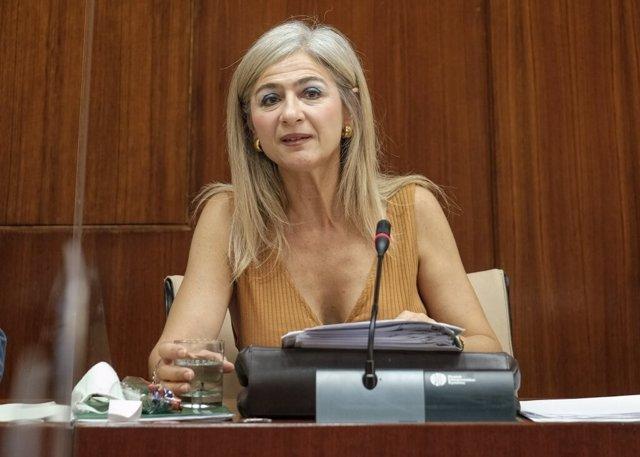 La consejera de Cultura, Patricia del Pozo, este miércoles durante su comparecencia parlamentaria en comisión.