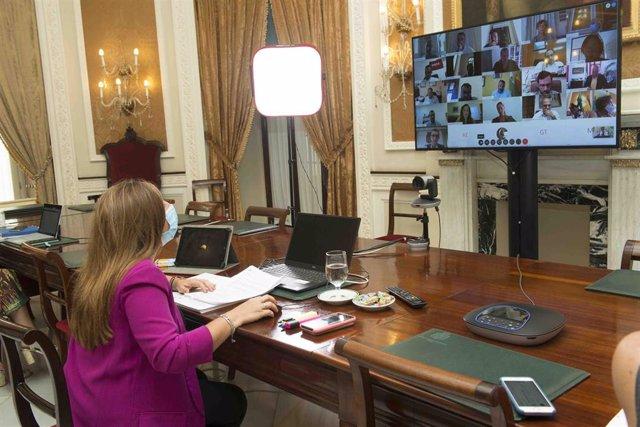 Irene Grcía preside el pleno ordinario de manera telemática