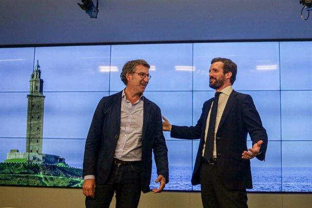 El presidente del Partido Popular, Pablo Casado (d), junto al presidente de la Xunta,Alberto Núñez Feijóo (i), durante la reunión del Comité Ejecutivo Nacional en la sede del partido, en Madrid (España), a 15 de julio de 2020.