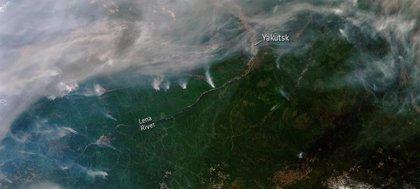 La prolongada ola de calor en Siberia sería prácticamente imposible sin el cambio climático, según un estudio