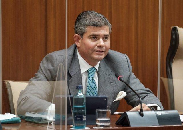 El director general de la Fundación Laboral Andaluza del Cemento y el Medio Ambiente (Flacema), Manuel Parejo, en su comparecencia parlamentaria
