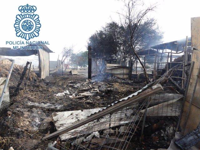 Incendio en Jardines de Guadaíra