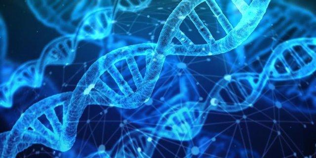 Genoma, ADN