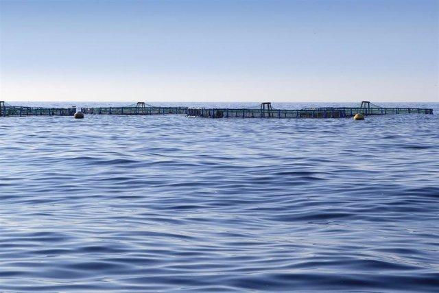 Imagen de archivo de acuicultura.
