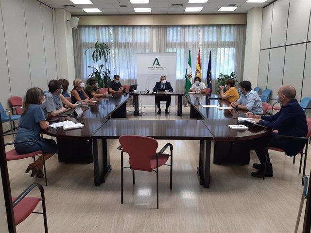 Imagen de la reunión del grupo de expertos convocados por la Consejería de Salud para elaborar el Plan Estratégico contra el Cáncer de Andalucía 2021-2025.