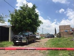 Imagen del lugar donde la Fiscalía de Jalisco ha encontrado una fosa común en el municipio de El Salto.