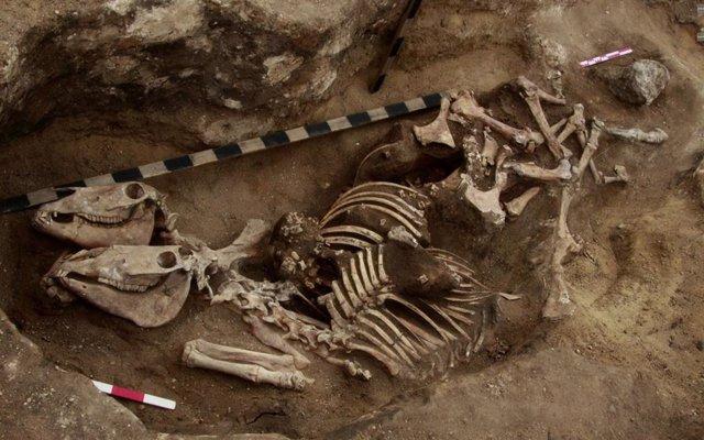 Pruebas del uso de caballos por jinetes hace más de 3.600 años