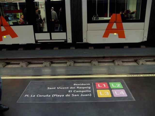 Líneas del TRAM Metropolitano de Alicante.