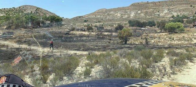 Zona afectada por las llamas en El Moralet.