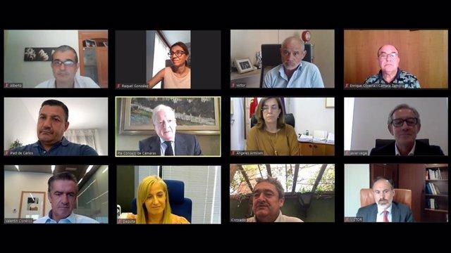 Reunión telemática del Consejo de Cámaras de Castilla y León y la Federación Regional de Municipios y Provincias.