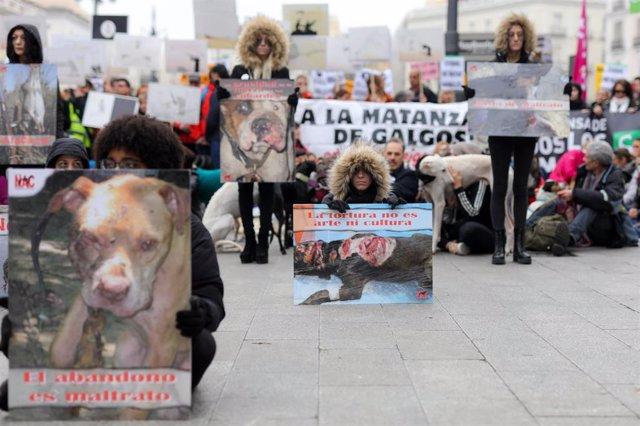 """Participantes en la manifestación en Madrid """"contra la caza, el maltrato, el abandono y la matanza"""" de perros de caza sostienen carteles, en Madrid (España) a 2 de febrero de 2020."""
