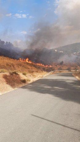 Incendio forestal en El Ronquillo